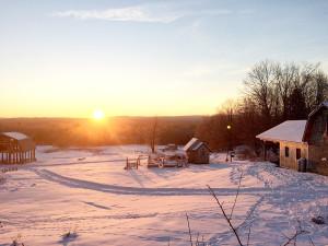 Olde Haven Farm